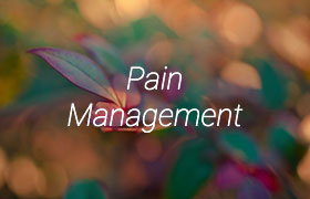 Link to acupuncture and pain management