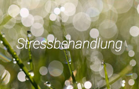 Link to acupuncture and stressbehandlung